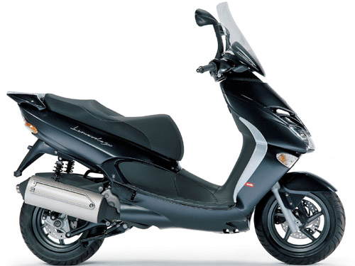 Download Aprilia Leonardo 250-300 repair manual